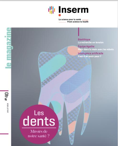 «Les dents – Miroirs de notre santé ?» Dossier INSERM